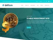 //is.investorsstartpage.com/images/hthumb/bitliom.com.jpg
