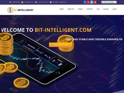 bit-intelligent.com