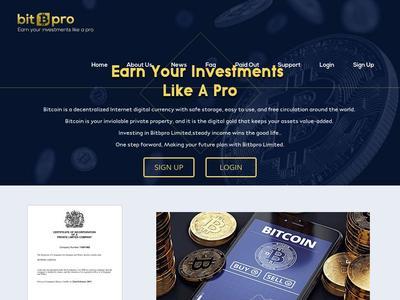 [SCAM] bitbpro.com - Min 5$ (Hourly For 96 Hours) RCB 80% Bitbpro.com