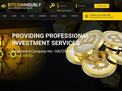 //is.investorsstartpage.com/images/hthumb/bitcoin-hourly.biz.jpg