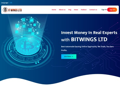 //is.investorsstartpage.com/images/hthumb/bitwings.top.jpg?90